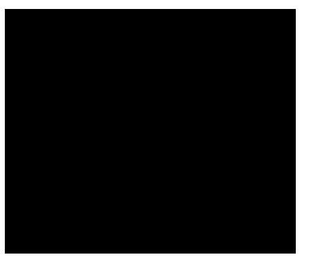 Stencil Stuff Logo